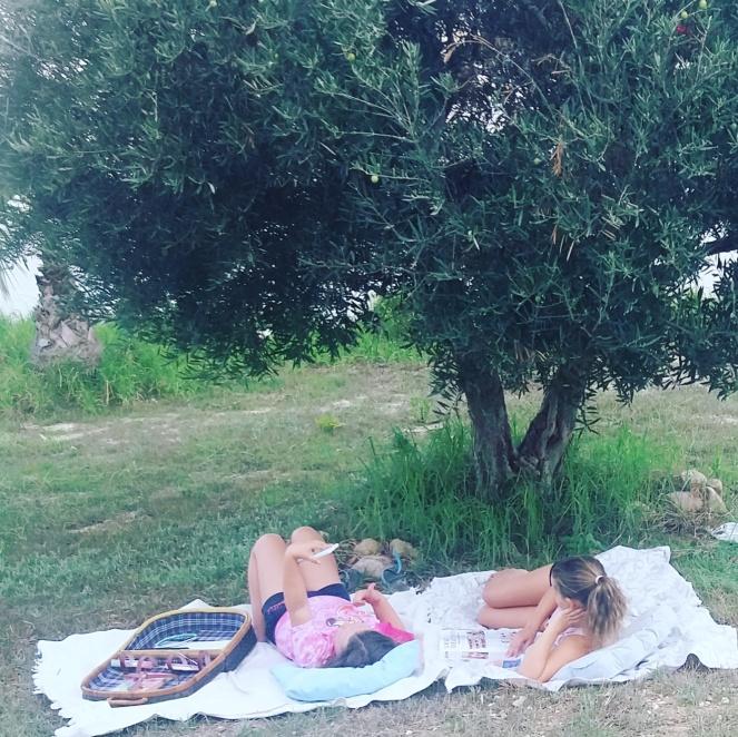 pigerundertræ